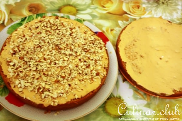 Рецепт торт медово-сметанный