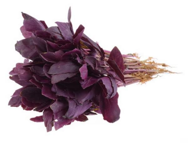 Фиолетовая трава в салате